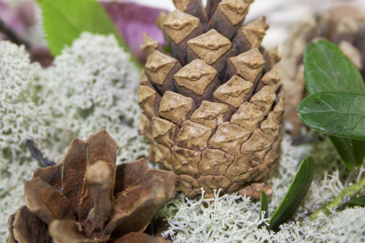 Metsästä tuodut luonnonkoristeet sopivat hienosti myös hautajaiskukkiin.